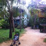 Photo of Guest House Flora & Fauna