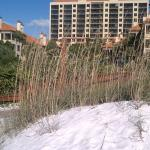 Sugar white sand at Eagles Nest, Marco Island, FL