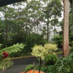 Tamborine Mountain Bed & Breakfast resmi