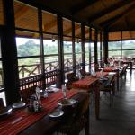 Ngorongoro Rhino Lodgeの写真