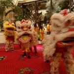 Chinese new Year Celebration Lions