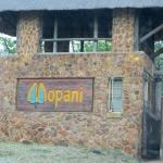 Mopani Rest Camp Foto
