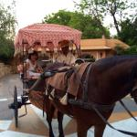 There is this horse drawn carriage that can bring you to your villa.