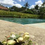 Photo de Ubud Lestari Bungalows