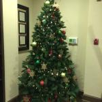 A Christmas tree in the lobby