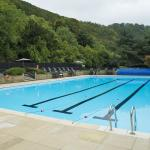 The Pool View of the Hill