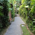 Walkway from busy street to secluded peaceful Breeze House