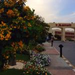 Foto de Sharm El Sheikh Marriott Resort