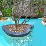 The back pool and pool bar - paradise!