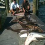 Bad Habit Sport Fishing Charters