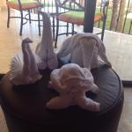 Towel arrangements at Hilton Los Cabos