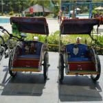 Mini Trishaws and bicycles for rental