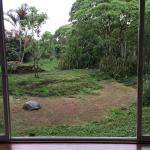 Foto di Semilla Verde Lodge & Spa
