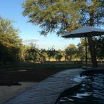 Photo of Mvuradona Safari Lodge