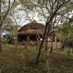 Foto de Serengeti Serena Safari Lodge