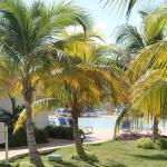 Foto de Memories Paraiso Azul Beach Resort