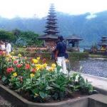 Wanna Bali Tour - Day Tours