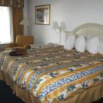 Quality Inn & Suites Clearwater Foto