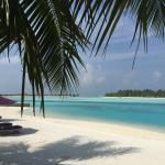 Photo de Naladhu Resort Maldives