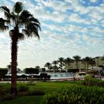 Foto de AA Grand Oasis Resort