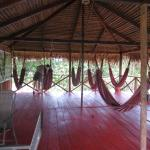 Amazon Turtle Lodge resmi