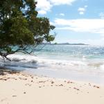Residence Hoteliere Les Cayalinesの写真