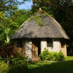 Photo de Makuzi Beach Lodge
