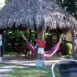 Photo of Pura Vida MINI Hostel Manuel Antonio