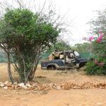 Photo of Kiboko Camp