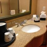 Foto de Hampton Inn and Suites Chicago-Libertyville