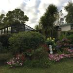 Mokoia Downs Estate B&B Foto