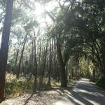 Biking/hiking trails that connect to Fort Wilderness