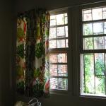 Window and macaw curtains