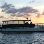 Sunset Marine And Boat Rentals