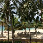 Photo de Harbour Village Beach Club