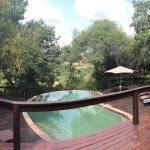 Elephant Plains Game Lodge Foto
