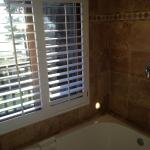 Huge soaking tub/shower with a view!