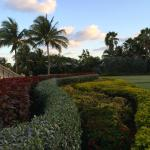 Manicured grounds