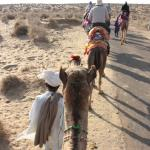 The Desert Resort (Rajasthan Desert Safari Camp) resmi