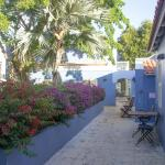 """Our """"street"""", and terrace, with bougainvillia"""