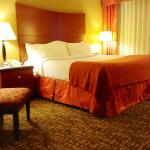 Foto di Holiday Inn Select Memphis - Downtown (Beale Street)
