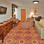 Photo de Holiday Inn Rochester Airport
