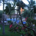 Bilde fra Plaza Pelicanos Club Beach Resort