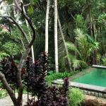 Villa Junjungan Resort Pool & Spa의 사진