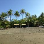 View of beach area