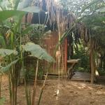 Beautiful setting. Trees, plants, birds One photo shows the inside of one of huts. Spacious for