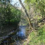Creek besides the property