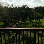 View from balcony.