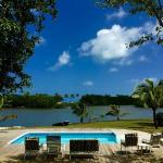 There is a pool and the property is situated by a lake that is visited by pelicans daily.