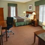 BEST WESTERN PLUS I-5 Inn & Suites Lodi